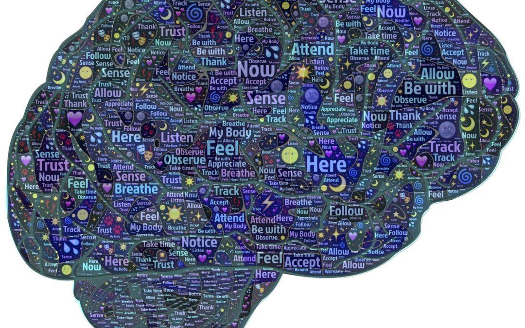 Comprendre le cerveau pour mieux apprendre une langue